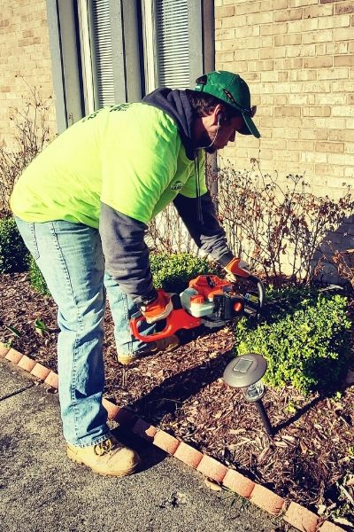 A member of Priority One Lawn Care using a hand trimmer to prune shrubs in a landscape bed.